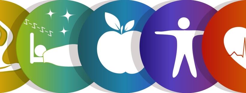 elements of wellness: yoga, sleep, nutrition, activity, physical health