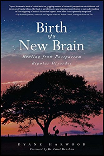 Birth of a New Brain by Dyane Harwood book cover