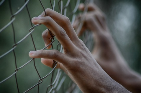 hands holding onto a chain-link fence