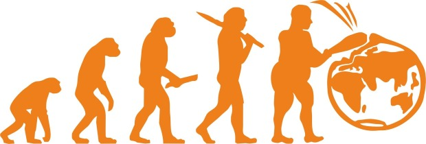 diagram of human evolution