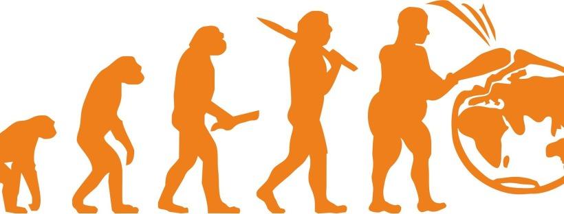 diagram of human evolution