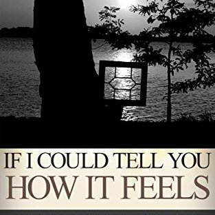 Book cover: If I could tell you how it feels by Alexis Rose