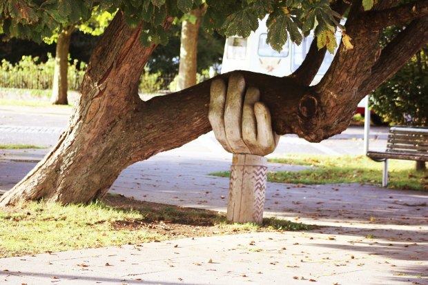 hand statue supporting tree branch