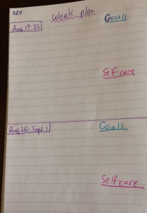 journal entry: week plan with goals