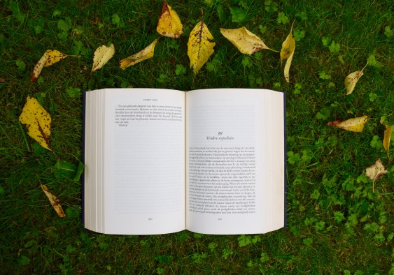 book lying on grass surrounded by leaves