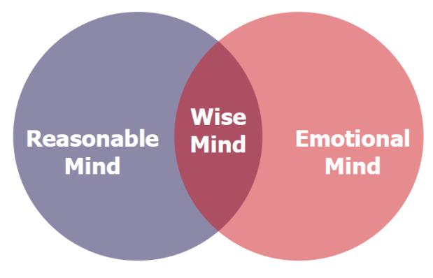 wise mind