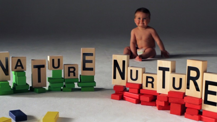 nature vs nurture building blocks