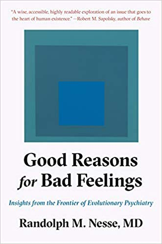 Good Reasons for Bad Feelings book cover